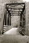 Bridge on the Creeper Trail